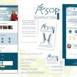 Aesop Consulting GmbH